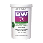 BW2 Clairol Bleach 32oz