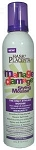 Hask Placenta Manage Damage Styling Mousse 9oz